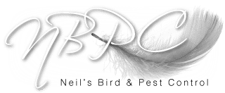 Neil's Bird and Pest Control Services