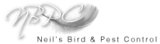 Neil's Bird and Pest Control Services Swindon